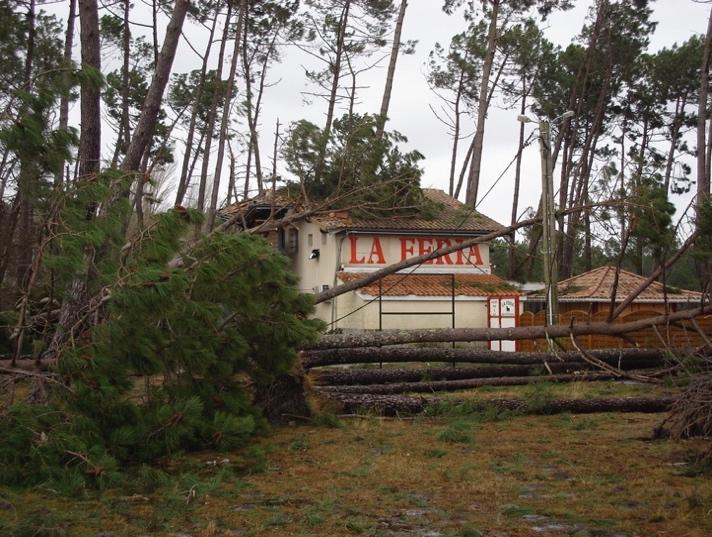 restaurant la feria après la tempête